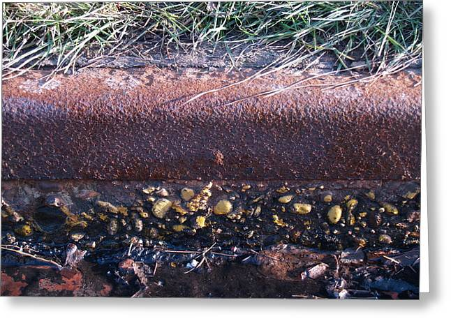 Curbing Influence Greeting Card by Jacob Stempky