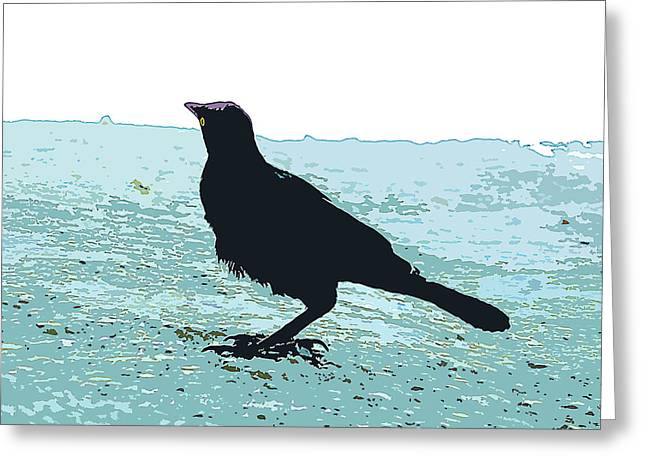 Curious Blackbird Greeting Card