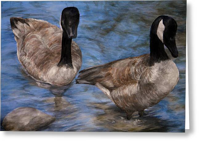 Curious Geese Greeting Card by Meagan  Visser