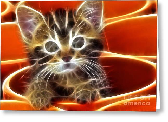 Curious Kitten Greeting Card by Pamela Johnson