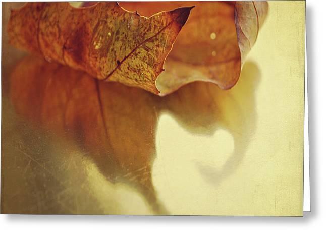 Curled Autumn Leaf Greeting Card by Lyn Randle