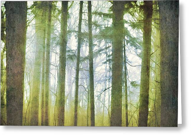 Curtain Of Morning Light Greeting Card