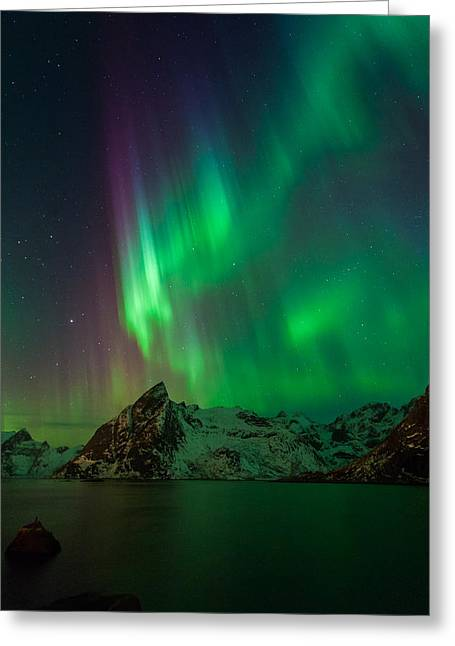 Curtains Of Light Greeting Card by Alex Conu