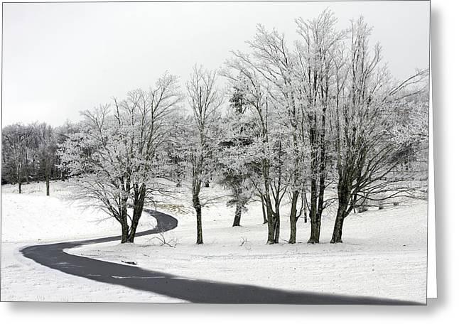 Mac Rae Field Curved Path Greeting Card