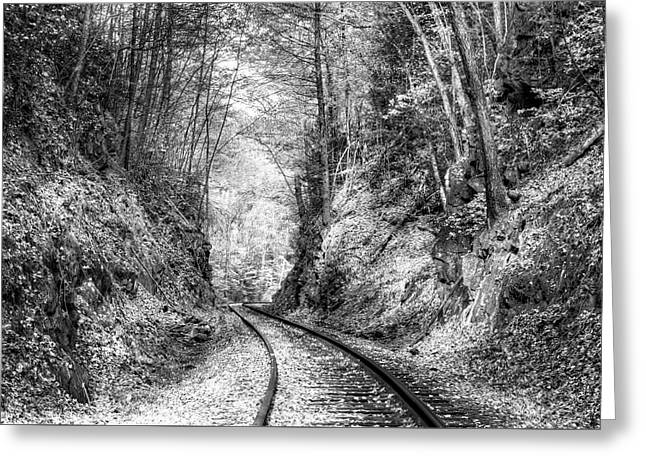 Curves Ahead Black And White Greeting Card