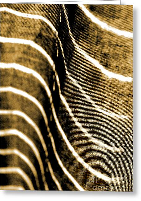 Curves And Folds Greeting Card