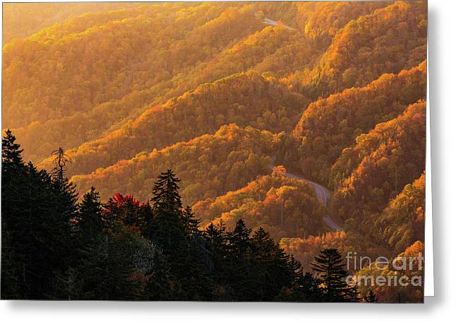 Smoky Mountain Roads Greeting Card