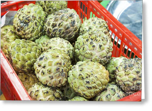 Custard Apples Annona Squamosa Greeting Card