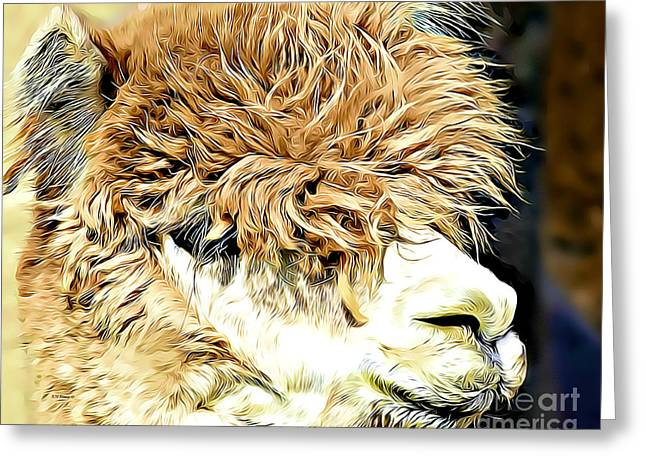 Soft And Shaggy Greeting Card by Kathy M Krause