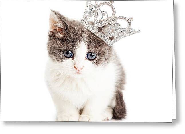 Cute Kitten Wearing Princess Crown Greeting Card by Susan Schmitz