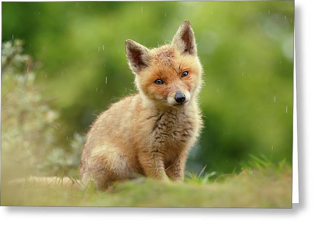 Cute Overload Series - Best Baby Fox Ever Greeting Card by Roeselien Raimond