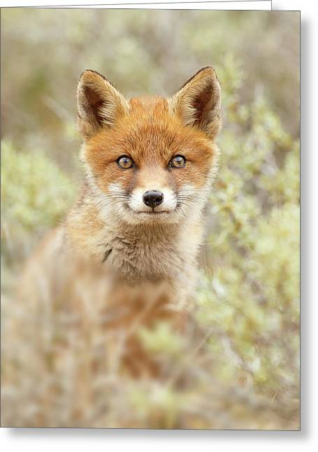 Cute Overload Series - Happy Baby Fox Greeting Card