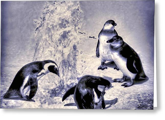 Cute Penguins Greeting Card