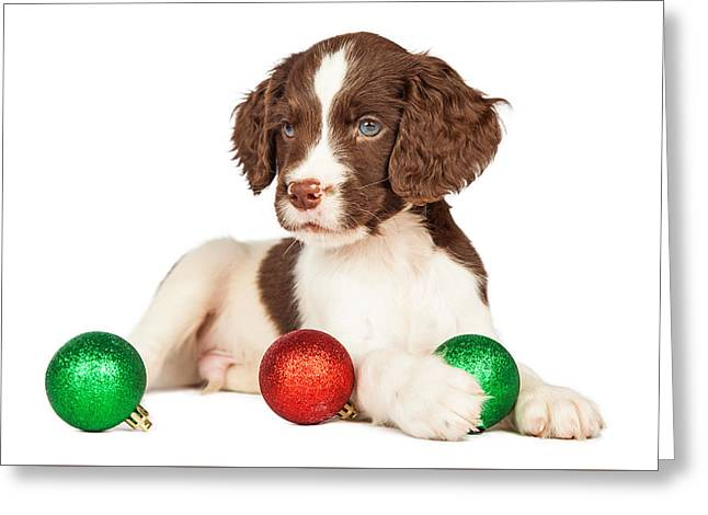 Cute Seven Week Old Puppy With Red And Green Christmas Ornaments Greeting Card