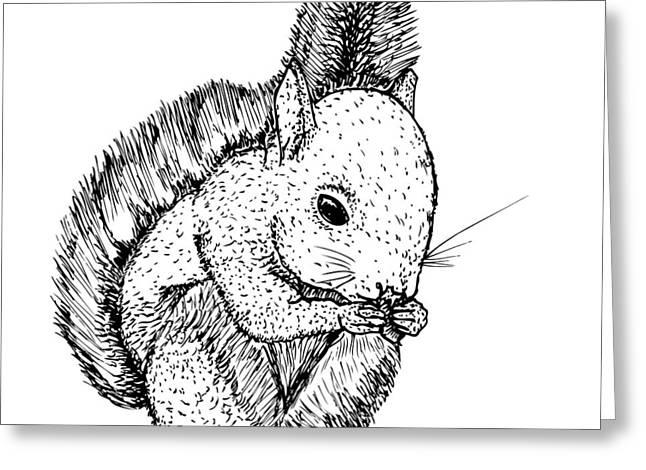Cute Squirrel Greeting Card by Karl Addison