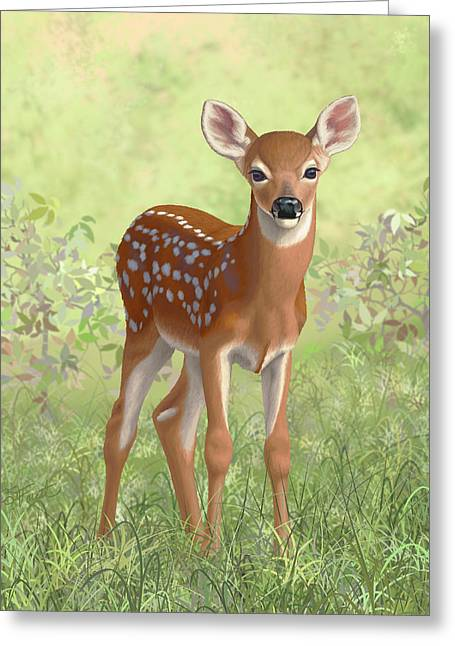 Greeting Card featuring the painting Cute Whitetail Deer Fawn by Crista Forest