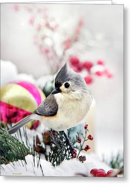 Cute Winter Bird - Tufted Titmouse Greeting Card by Christina Rollo