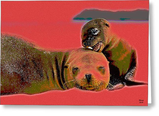 Cutest Baby Seal Ever Greeting Card