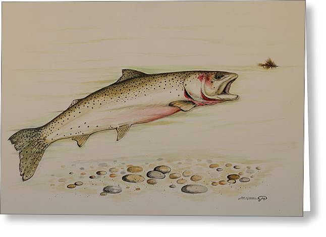 Cutthroat Trout Greeting Card by Jeff Harrell