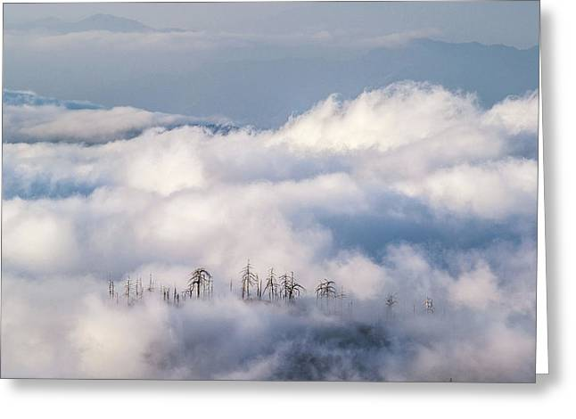 Greeting Card featuring the photograph Cuyamaca Island by Alexander Kunz