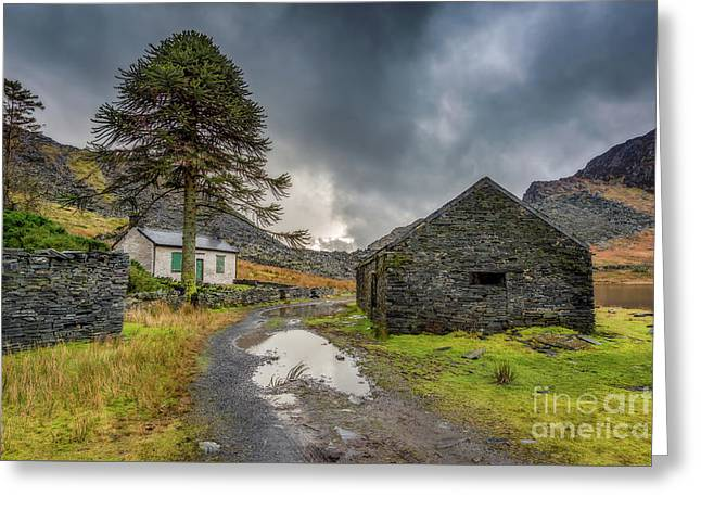 Cwmorthin Slate Ruins Greeting Card by Adrian Evans