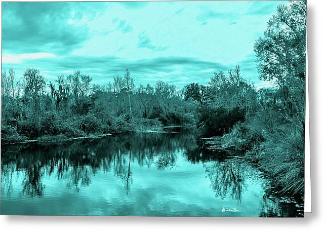 Cyan Dreaming - Sarasota Pond Greeting Card by Madeline Ellis