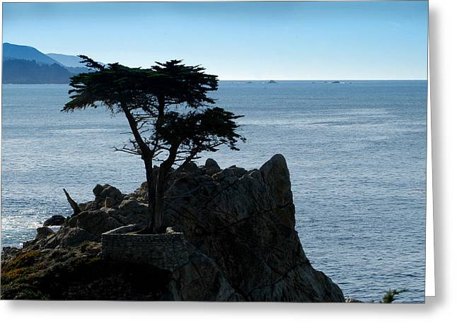 Cypress Point At Monterey Peninsula Greeting Card by Lyle  Huisken
