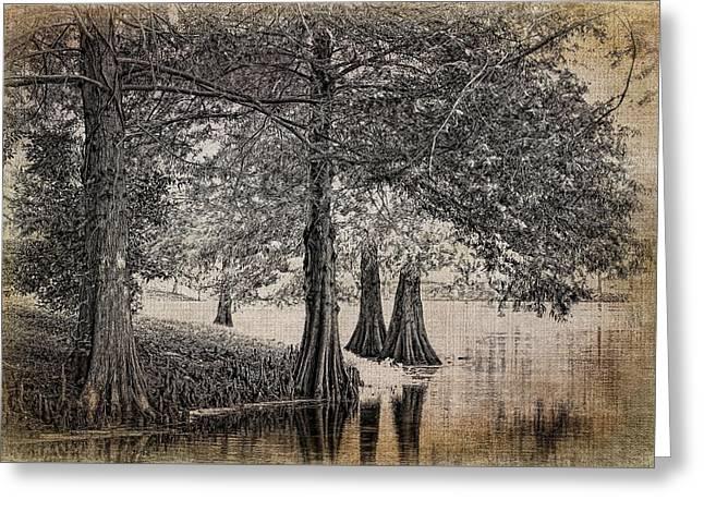 Cypress Retreat Greeting Card