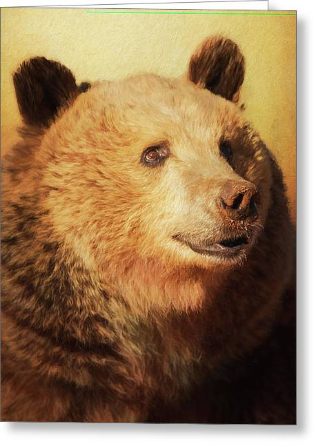 Cypress The Bear Greeting Card