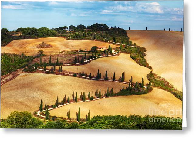Cypress Trees Serpentine Road In Tuscany, Italy. Amazing Tuscan Landscape Greeting Card