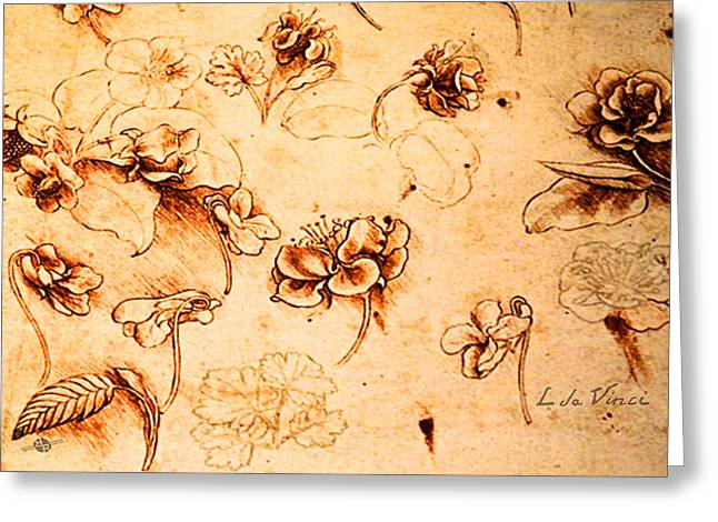 Da Vinci Flower Study Gold By Da Vinci Greeting Card by Tony Rubino