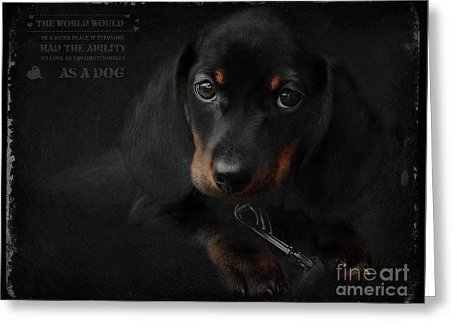 Dachshund - Puppy Love Greeting Card