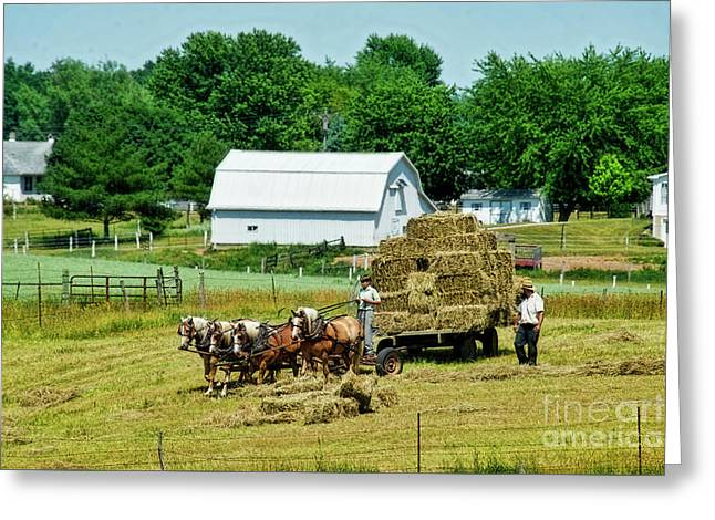 Dad And Son In Hay Field Greeting Card by David Arment