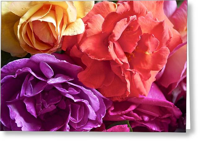 Dad's Roses Greeting Card by Gwyn Newcombe
