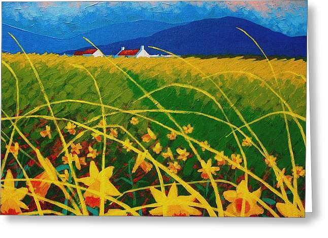 Daffodil Landscape Greeting Card by John  Nolan