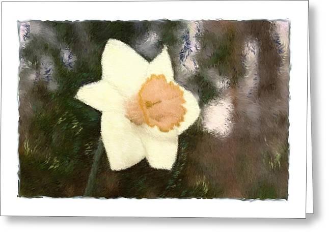 Daffodil Greeting Card by Sandy Belk
