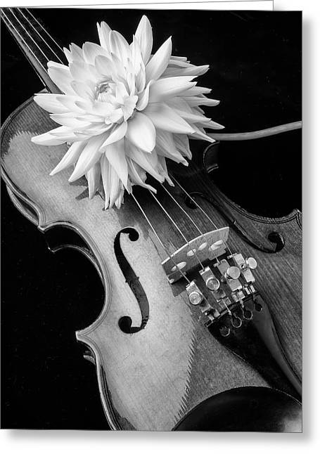 Dahlia And Violin Greeting Card by Garry Gay