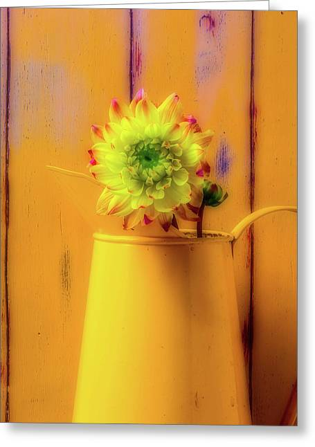 Dahlia In Yellow Pitcher Greeting Card