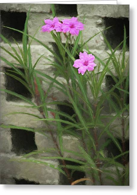 Greeting Card featuring the photograph Dainty Pink by Penny Lisowski