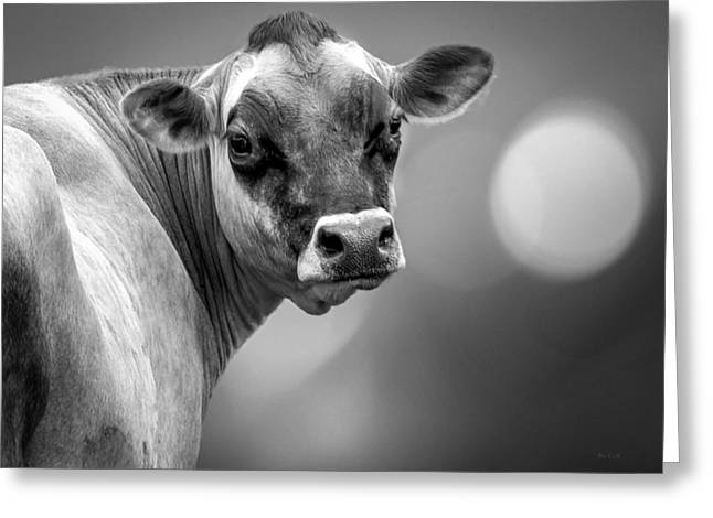 Dairy Cow Elsie Greeting Card by Bob Orsillo