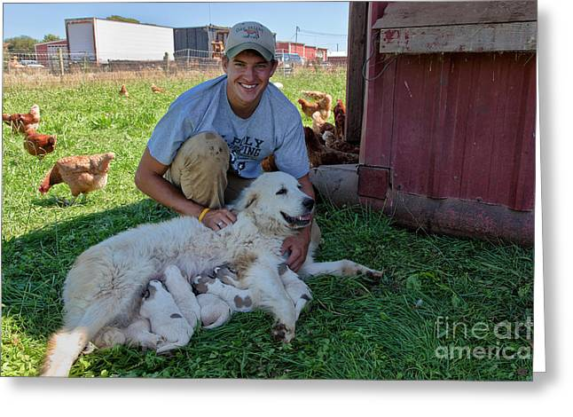 Dairy Farmer With Great Pyrenees Greeting Card