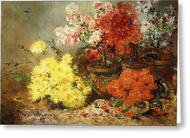 Daisies, Begonia, And Other Flowers In Pots Greeting Card by Eugene Henri Cauchois