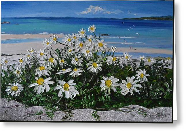 Daisies Coral Strand Connemara Greeting Card