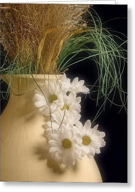 Daisies On The Side Greeting Card