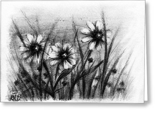Daisies Greeting Card by Rachel Christine Nowicki