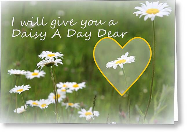 Daisy A Day - Romantic Typography Greeting Card