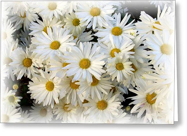 Daisy Bouquet Greeting Card by Carol Sweetwood