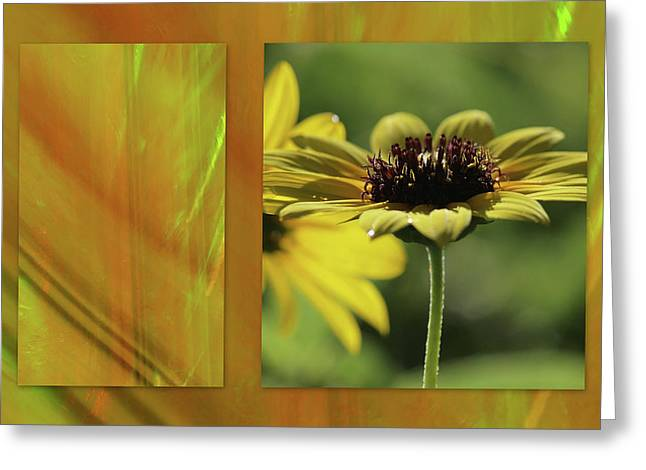 Greeting Card featuring the digital art Daisy Diptych by Irma BACKELANT GALLERIES