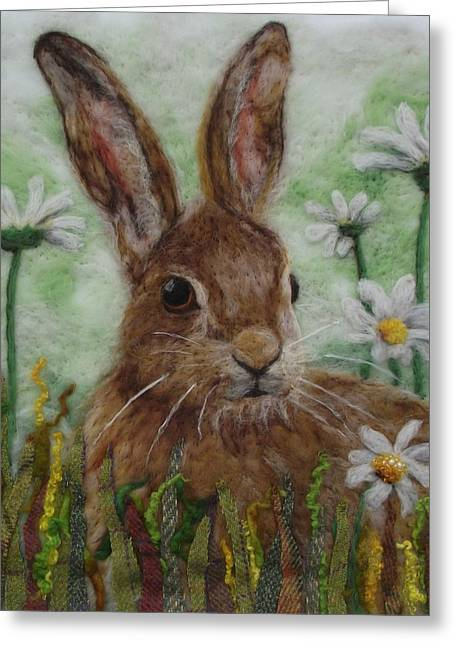 Daisy Hare Greeting Card
