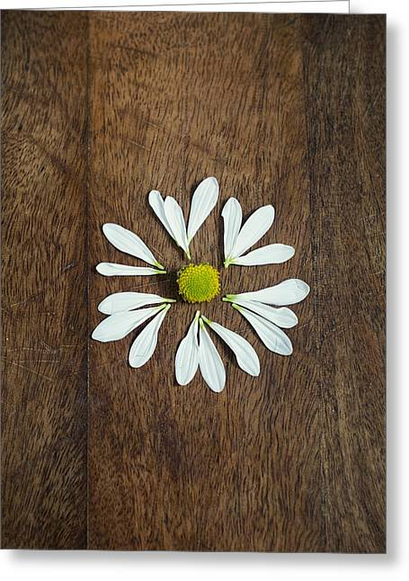 Daisy Petals On Wooden Background  Greeting Card